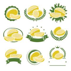 Melon labels and elements set. Vector