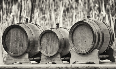 old wooden oil casks