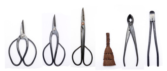 Keuken foto achterwand Bonsai bonsai tool kit
