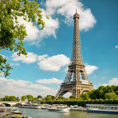 Fototapete - The Eiffel in Paris