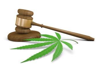Marijuana drug use laws and legalization