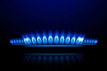 picture of gas5
