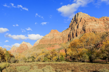 Travelling in the famous Zion National Park