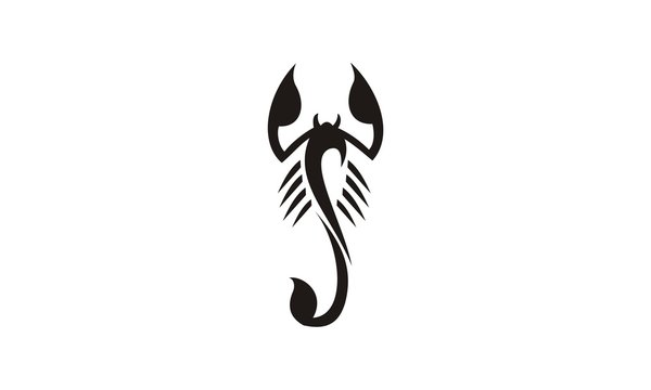 tribal scorpion abstract design