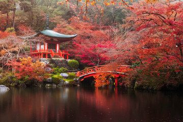 Photo sur Plexiglas Japon Daigo-ji temple in autumn