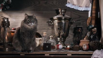 На старом чердаке. Натюрморт с котом. Множество разных старых предметов - керосиновые лампы, самовар, сломанные игрушки, коробки и шкатулки. Бутылки, кастрюли. Много пыли. Деревянная темная доска