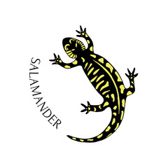 Hand drawn salamander in black and yellow color. Vector for tattoo art or logo