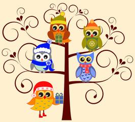 Owls Illustrations