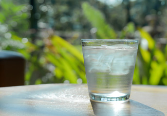 Glass water,Ice glass on green background.