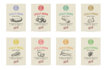 Vector hand drawn sketch vegetable banners set.