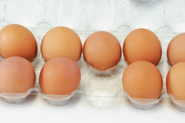 close-up on fresh egg on white background