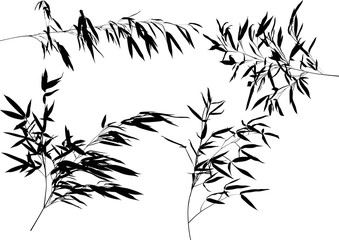 four black bamboo branche silhouettes set illustration