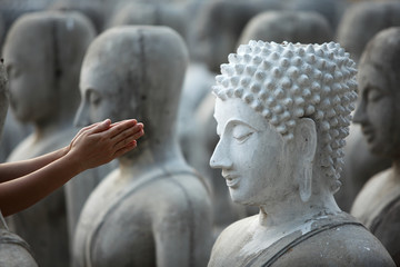 hand give respect to buddha image