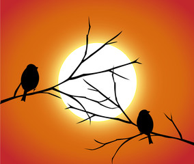 Two birds sitting on a branches in the sunset vector