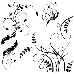 Collection for designers, meadow, plants vector set