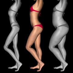 Conceptual 3D woman as fat vs fit anorexic