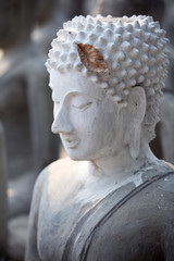 dry leaf on buddha image