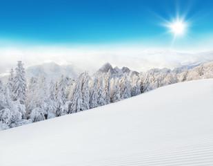 Fototapete - Winter Alpine snowy landscape