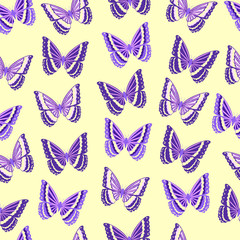 Butterfly. Seamless background.