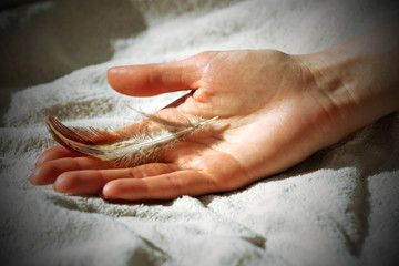 Hands holding a feather on white blanket background, close-up