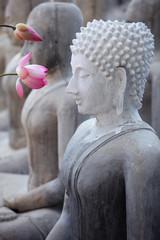 lotus flower with buddha image