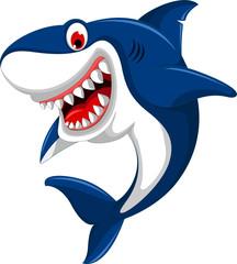 cute angry shark