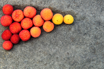 Fall color, yellow and orange plant pods on stone