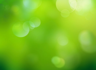 Blur green nature defocused background.Abstract spring wallpaper