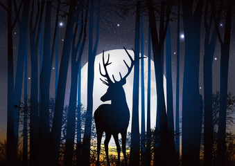 Cerf_Lune Foret