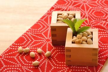 節分 豆とヒイラギの葉