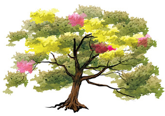 Tree,Big tree on white background,watercolor look with brush stroke ,vector illustration