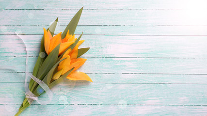 Fresh  spring yellow tulips flowers  on turquoise  painted woode