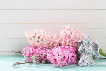 Fresh pink hyacinths  and  angel