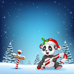 Cartoon funny panda sitting with a north pole wooden sign