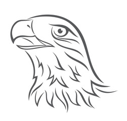 Eagle's head on white background. Vector illustration.