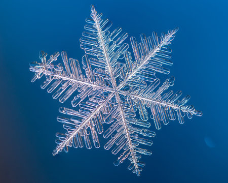 a real snowflake macro lies on a blue background, as if flying in sky