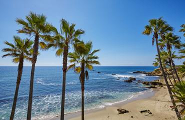 Laguna Beach 08