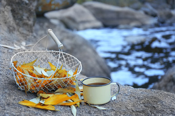 Basket with golden leaves and mug on rock in the forest, close up