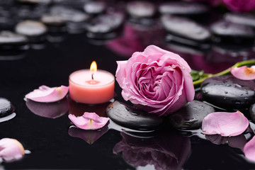 Deurstickers Spa Beautiful rose petals with candle and therapy stones