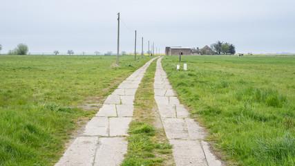 Feldweg auf einer Wiese