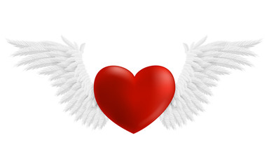 Hovering heart with wings, vector illustration isolated on white background