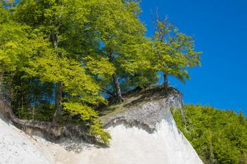 Wall Mural - Ostseeküste auf der Insel Rügen