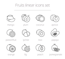 Fruits linear icons set