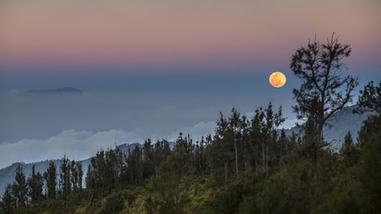 Moon above the forest, East Java, Indonesia