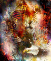 beautiful painting of eagle and tiger on an color abstract background with ornamental pattern, with spot structures