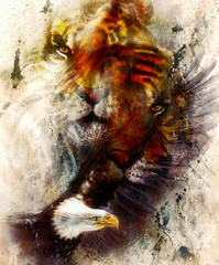 beautiful painting of eagle and tiger on an color abstract background with ornamental pattern, with spot structures. Brown, orange, black and white color.