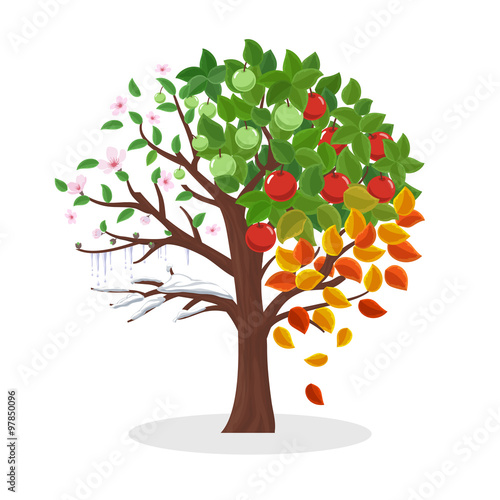 Wall mural Seasons tree vector