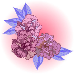 Decorative Illustration Vector