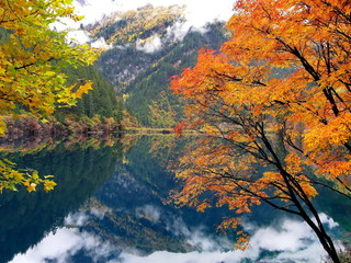 Reflections of the colored trees in the lake in Jiuzhaigou  of China's Sichuan province