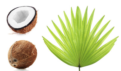 Fresh coconuts with palm leaf, isolated  on white